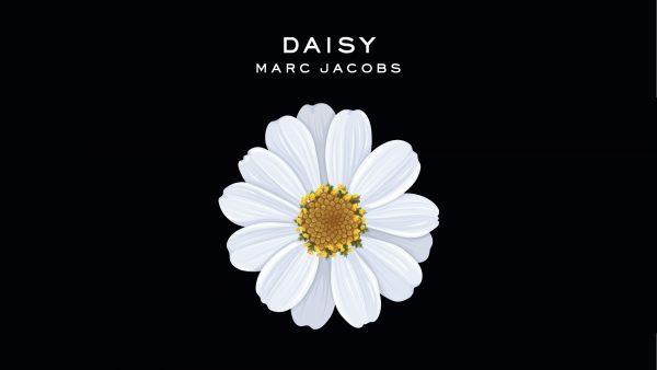 Marc Jacobs' hvide Daisy-blomst på en sort baggrund,
